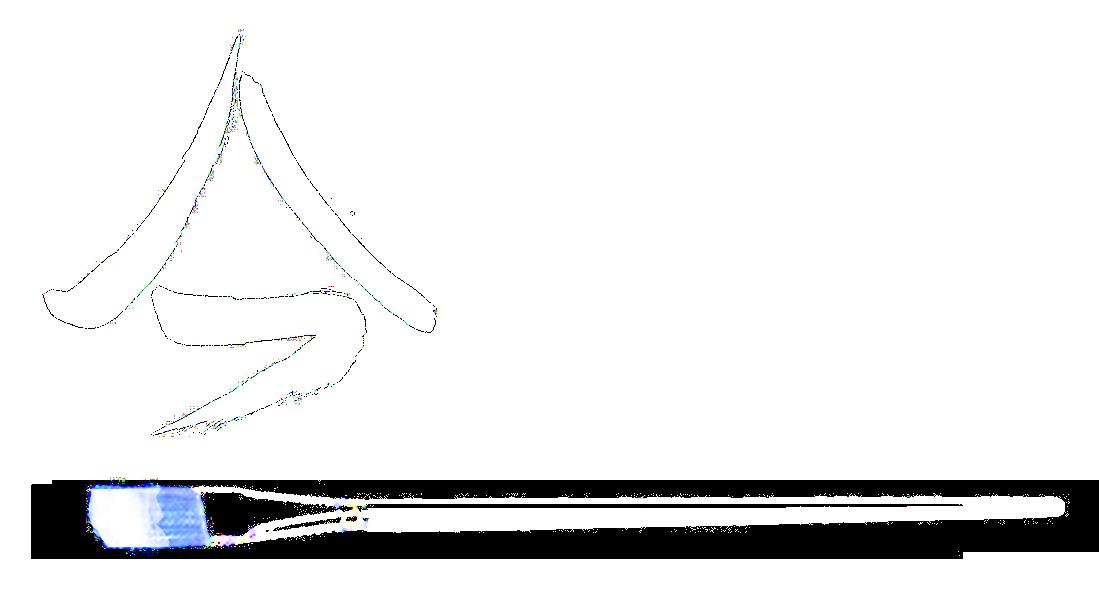 Andreas Zehnder Logo